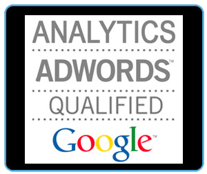 Google Analytics-Adwords Qualification - Michael Bohatch